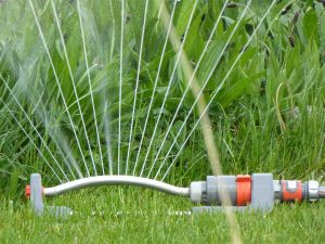 Sprinklers - no good when trying to save water!