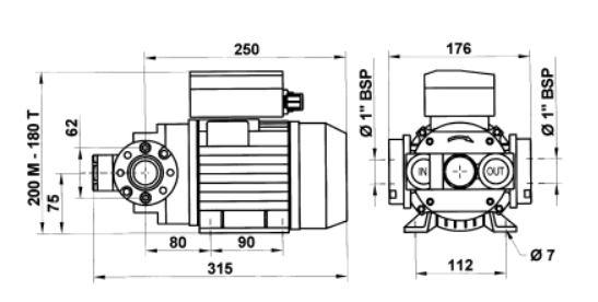 piusi e120 diesel transfer pump 110v  50hz