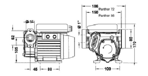 Piusi Panther 72 Diesel Transfer Pump 230v Fuel Transfer